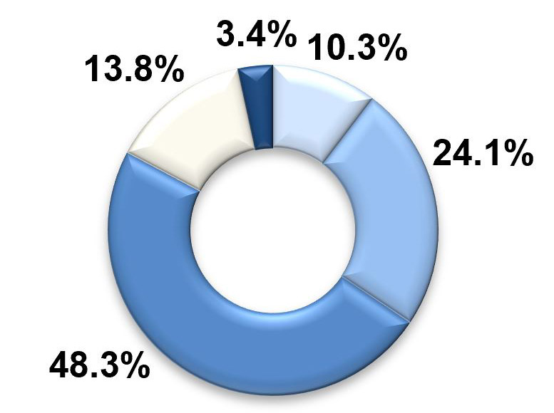 A pie graph with five segments. The largest two segments, labelled 'similar to most' and 'more than most' represent 48.3 per cent and 24.1 per cent respectively. The third-largest segment, labelled 'less than most', represents 13.8 per cent. The two smallest segments are 'much more than most' at 10.3 per cent and finally 'much less than most' at 3.4 per cent.