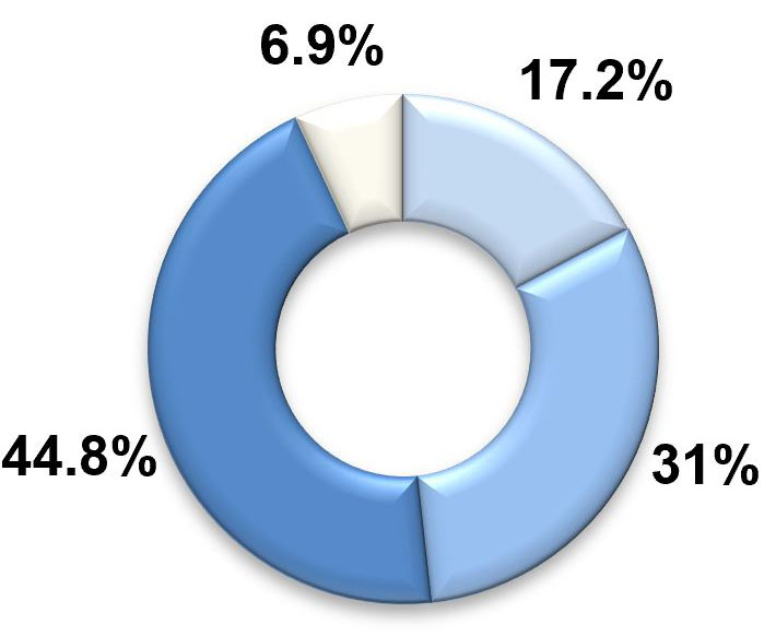 A pie graph with four segments. The largest two segments, labelled 'similar to most' and 'more than most' represent 44.8 per cent and 31 per cent respectively. The third-largest segment, labelled 'much more than most', represents 17.2 per cent. The smallest segment, labelled 'less than most', represents 6.9 per cent.