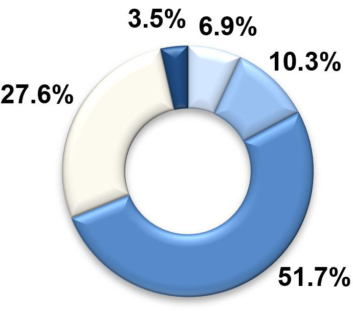 A pie graph with five segments. The largest two segments, labelled 'similar to most' and 'less than most' represent 51.7 per cent and 27.6 per cent respectively. The third-largest segment, labelled 'more than most', represents 10.3 per cent. The two smallest segments are 'much more than most' at 6.9 per cent and finally 'much less than most' at 3.5 per cent.